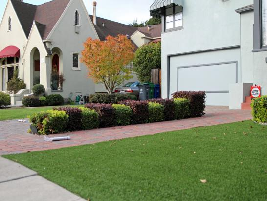 Artificial Grass Photos: Artificial Grass Hawaiian Paradise Park, Hawaii Landscaping, Landscaping Ideas For Front Yard