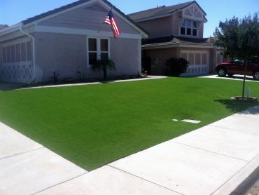 Artificial Grass Photos: Artificial Grass Pukalani, Hawaii Roof Top, Small Front Yard Landscaping