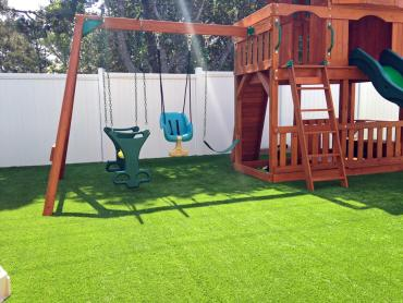 Artificial Grass Photos: Artificial Grass Waipi'o, Hawaii Roof Top, Backyard Landscaping