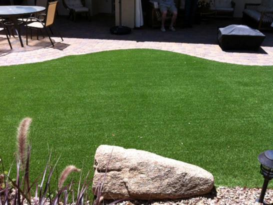 Artificial Grass Photos: Artificial Lawn 'Aiea, Hawaii Cat Grass, Backyard Makeover