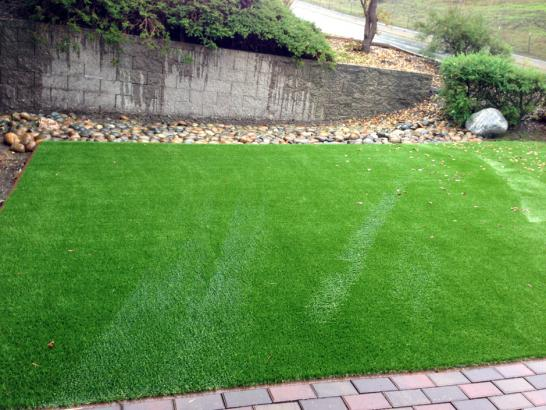Artificial Grass Photos: Artificial Lawn Waialua, Hawaii City Landscape, Backyard Designs