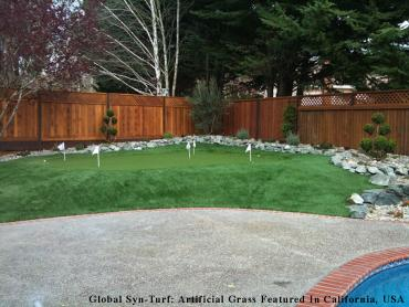 Artificial Grass Photos: Artificial Turf Cost Makakilo City, Hawaii Landscaping Business, Backyard Landscape Ideas
