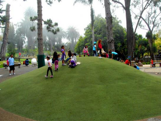Artificial Grass Photos: Artificial Turf Installation Kukuihaele, Hawaii Design Ideas, Parks