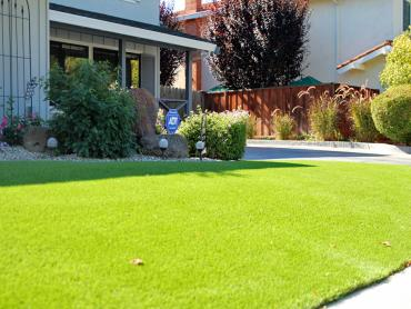 Artificial Grass Photos: Artificial Turf Installation Pearl City, Hawaii Gardeners, Front Yard Landscaping Ideas