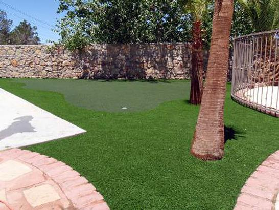 Artificial Grass Photos: Fake Grass Carpet Ma'ili, Hawaii Office Putting Green, Backyards