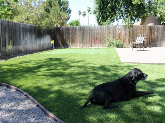 Artificial Grass Photos: Grass Installation Village Park, Hawaii Dog Grass, Backyard Landscaping Ideas