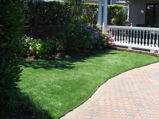 Artificial Grass Photos: How To Install Artificial Grass Makawao, Hawaii Dog Running, Front Yard Landscaping