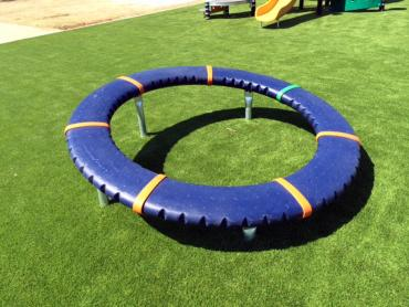 Artificial Grass Photos: Outdoor Carpet Ka'a'awa, Hawaii Kids Indoor Playground, Parks