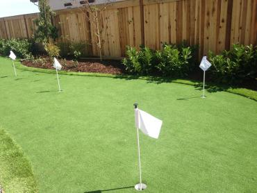 Artificial Grass Photos: Plastic Grass Waikapu, Hawaii Putting Greens, Backyard