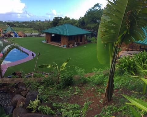 Plastic Grass Wailua, Hawaii Backyard Playground, Swimming Pools artificial grass