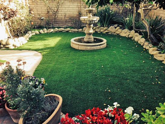 Artificial Grass Photos: Plastic Grass Whitmore Village, Hawaii Design Ideas