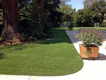 Artificial Grass Photos: Synthetic Grass Holualoa, Hawaii Roof Top, Front Yard