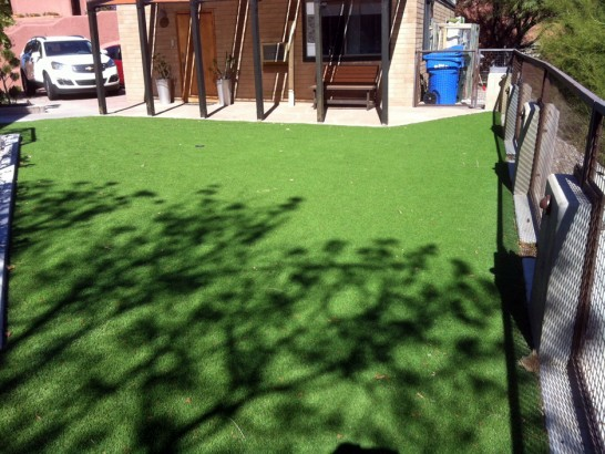 Synthetic Lawn Kane'ohe, Hawaii City Landscape, Backyard Garden Ideas artificial grass