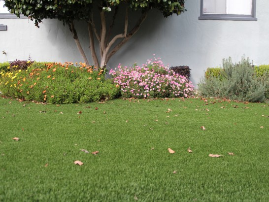 Artificial Grass Photos: Synthetic Turf Supplier Kailua-Kona, Hawaii Landscape Design, Landscaping Ideas For Front Yard