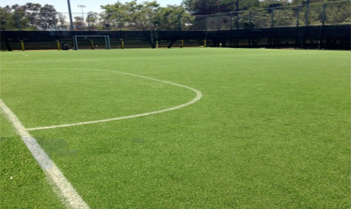 Sports Fields Synthetic Grass Hawaii, Fake Grass