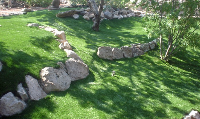 Synthetic Grass for Landscape Lawns Hawaii